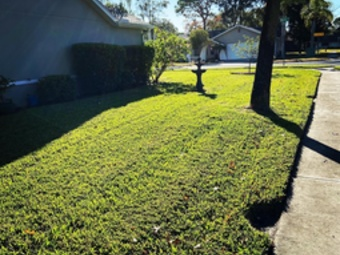 Yard mowing company in Hudson, FL, 34667