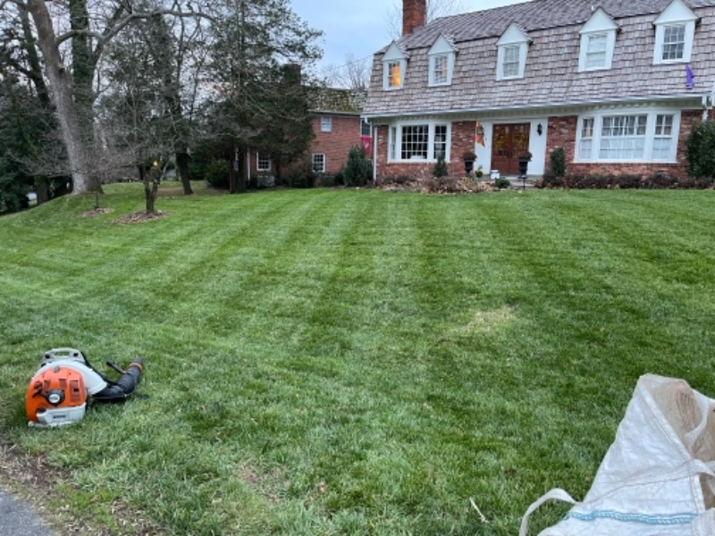 Yard mowing company in Silver Spring, MD, 20902