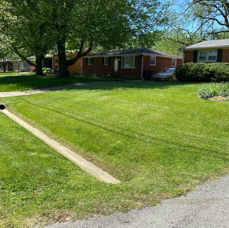 Yard mowing company in Louisville, KY, 40258