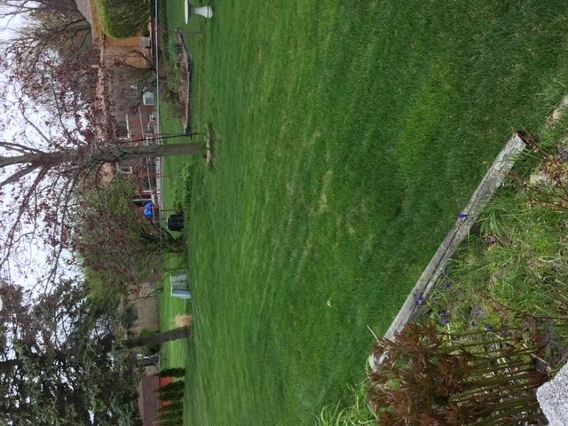 Yard mowing company in Troy, MI, 48083