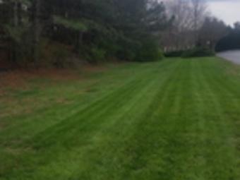 Yard mowing company in Cumming, GA, 30041