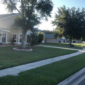 Yard mowing company in Kissimmee, FL, 34744
