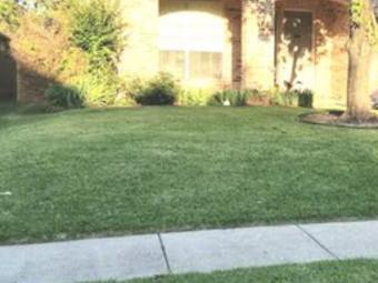 Yard mowing company in Princeton, TX, 75407