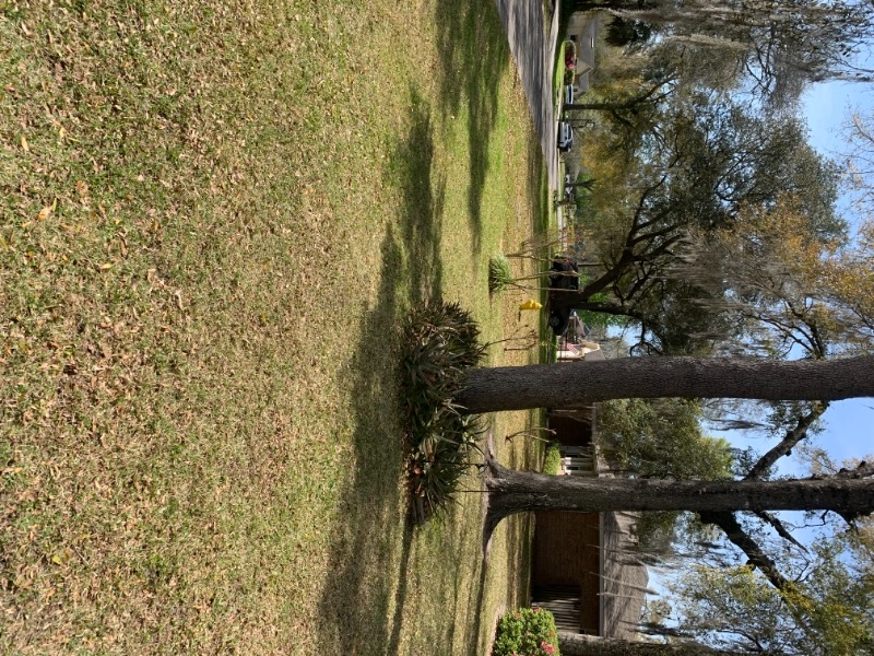 Yard mowing company in Newberry, FL, 32669