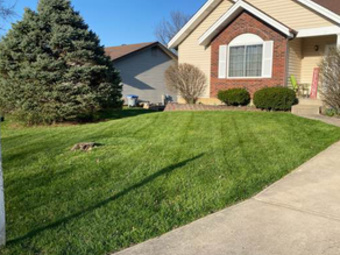 Yard mowing company in Saint Charles, MO, 63301