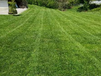 Yard mowing company in Sharonville, OH, 45241
