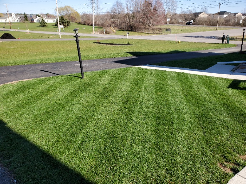 Yard mowing company in Orchard Park, NY, 14127