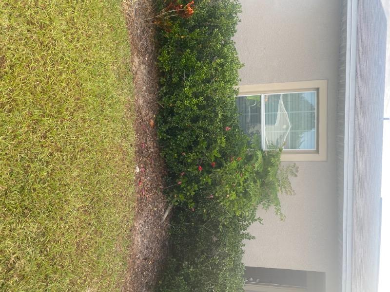 Yard mowing company in Bartow, FL, 33830