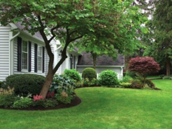 Yard mowing company in Towson, MD, 21204