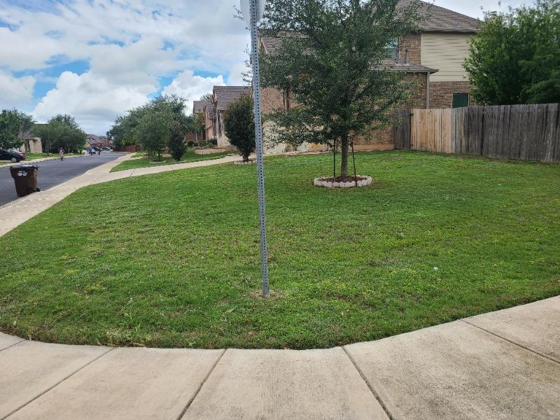 Yard mowing company in Schertz, TX, 78108