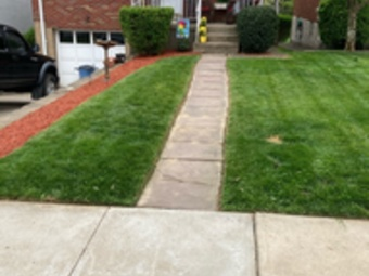 Yard mowing company in Pittsburgh, PA, 15206