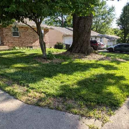 Yard mowing company in Independence, MO, 64055-5302
