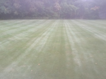 Yard mowing company in Erie, PA, 16506