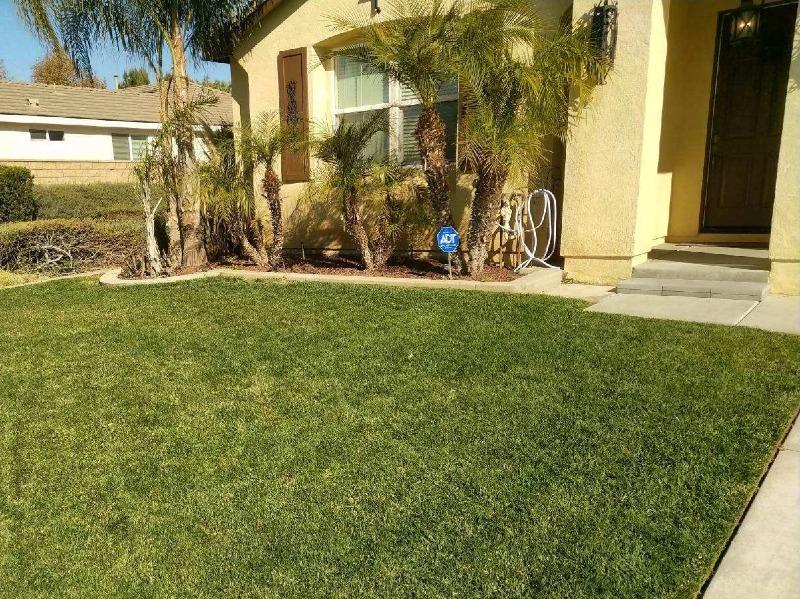 Yard mowing company in Nuevo, CA, 92567