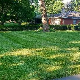 Yard mowing company in Columbus, OH, 43229