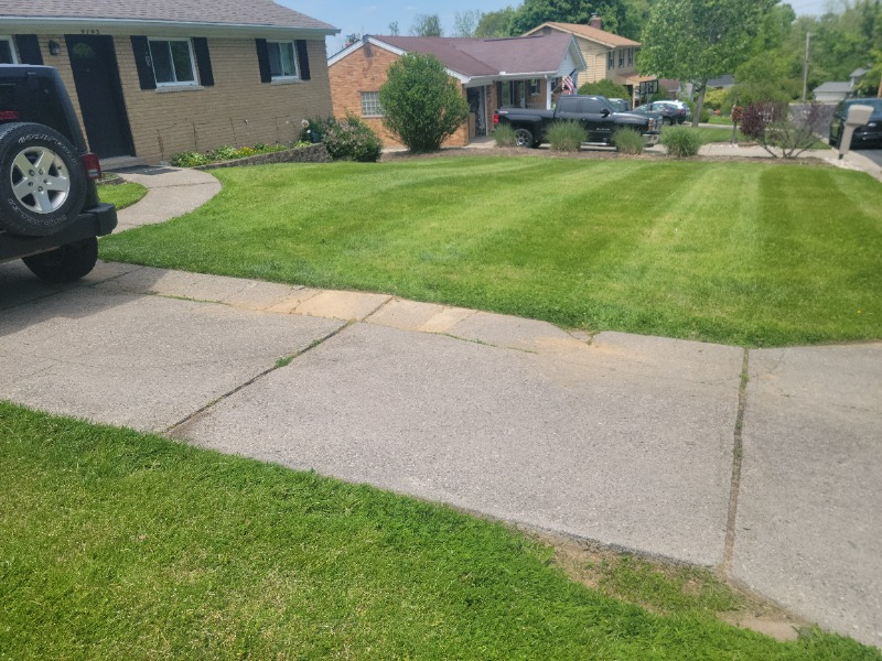 Yard mowing company in Hebron, KY, 41010