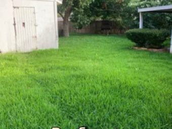 Yard mowing company in Inez, TX, 77968