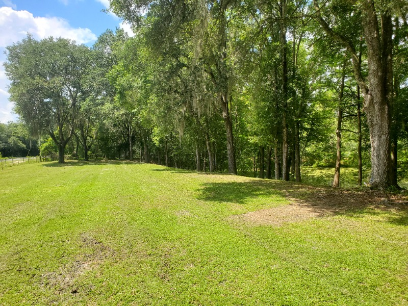 Yard mowing company in Clearwater, FL, 33765