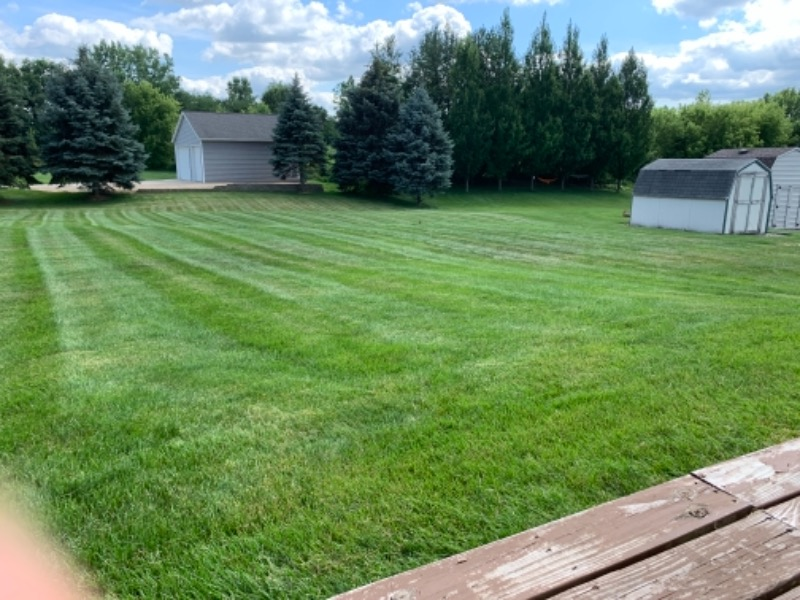 Yard mowing company in Allendale Charter Township, MI, 49401