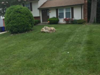 Yard mowing company in Springdale, MD, 20774