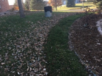 Yard mowing company in Evans, CO, 80620
