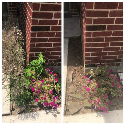 Yard mowing company in Montgomery, TX, 77356