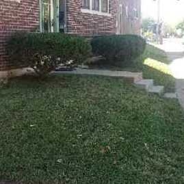 Yard mowing company in St. Louis, MO, 63119