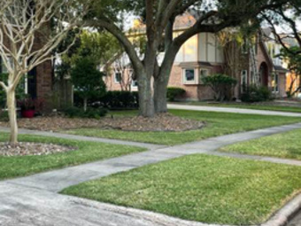 Yard mowing company in Channelview, TX, 77530