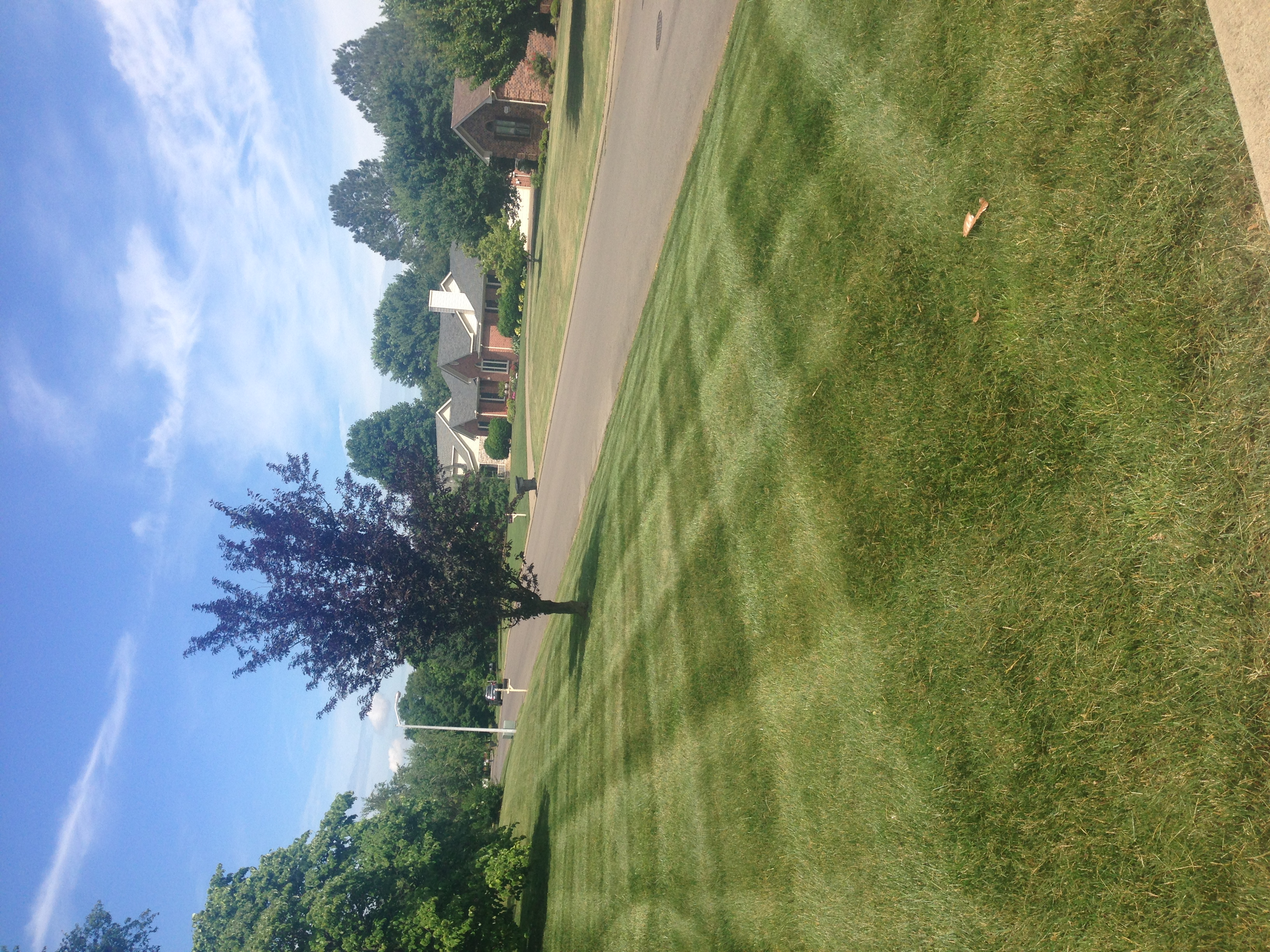 Lawn Care Service in Murfreesboro, Tn, 37130