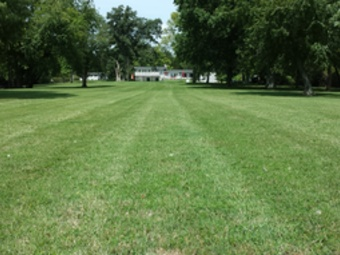 Lawn Care Service in Cross Plains, TN, 37049