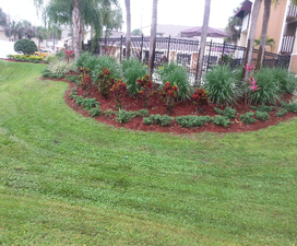 Lawn Care Service in Tampa, FL, 33613