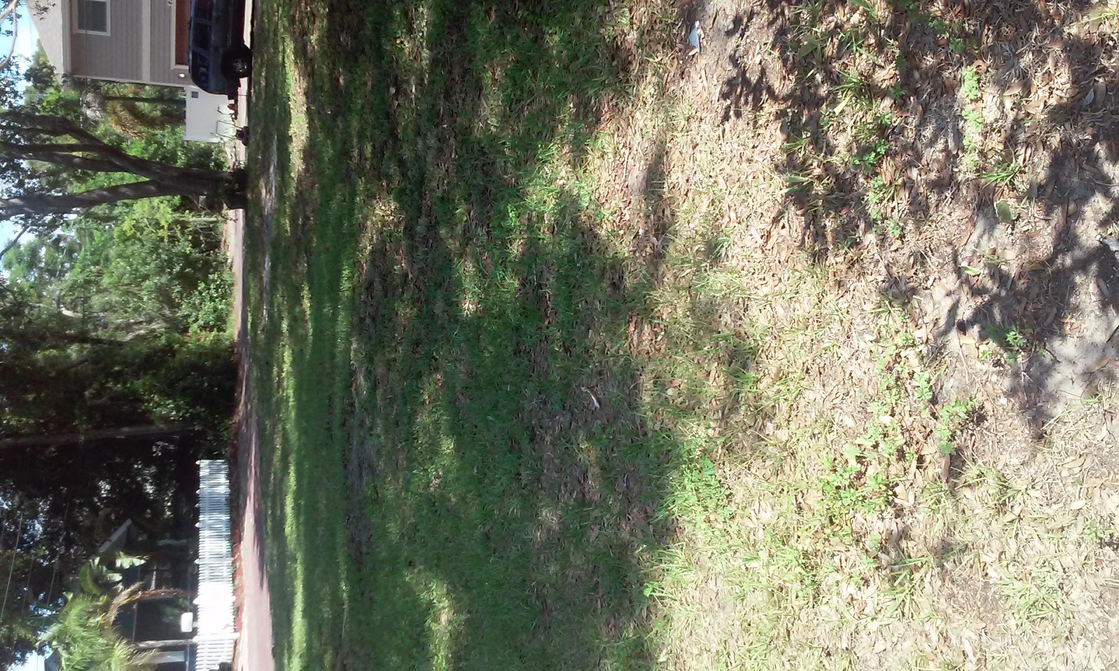 Lawn Care Service in St Petersburg, FL, 33701