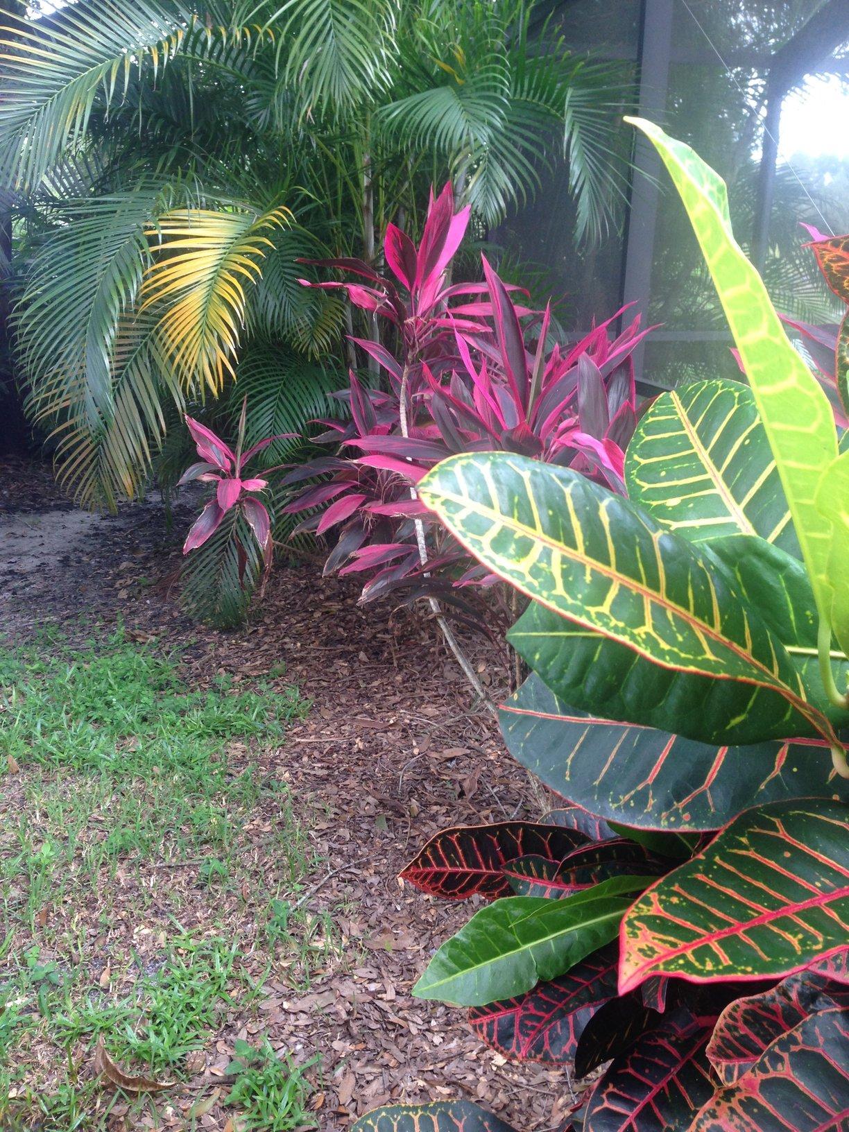 Lawn Care Service in Tampa, FL, 33613