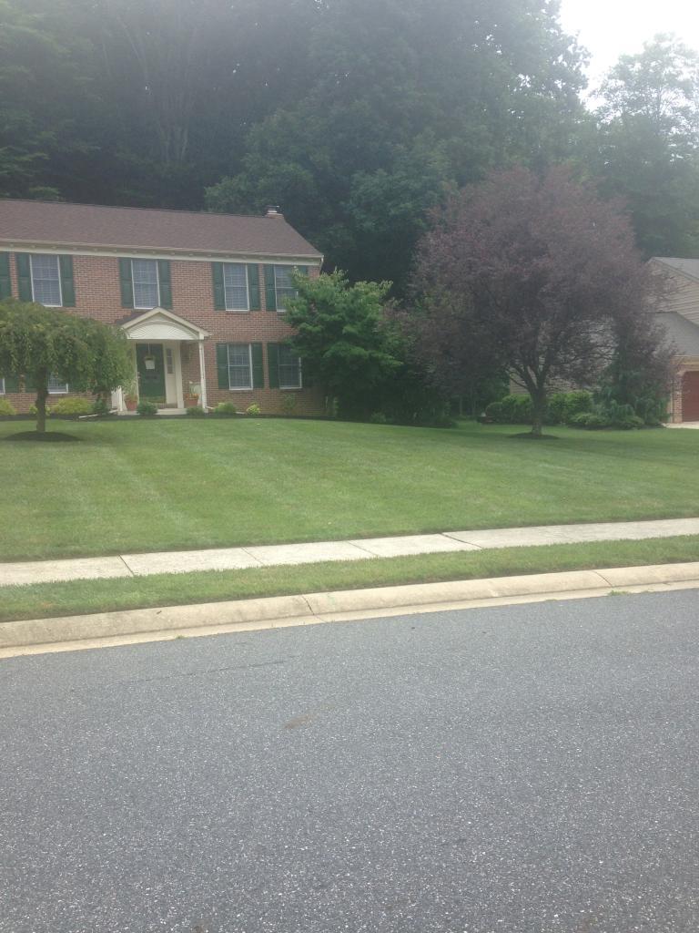 Lawn Care Service in Murfreesboro, TN, 37128