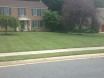 Lawn Care Service in Murfreesboro, TN, 37128