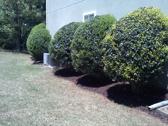 Lawn Care Service in Kennesaw, GA, 30144