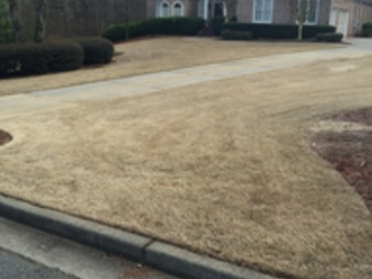 Lawn Care Service in Buford, GA, 30518