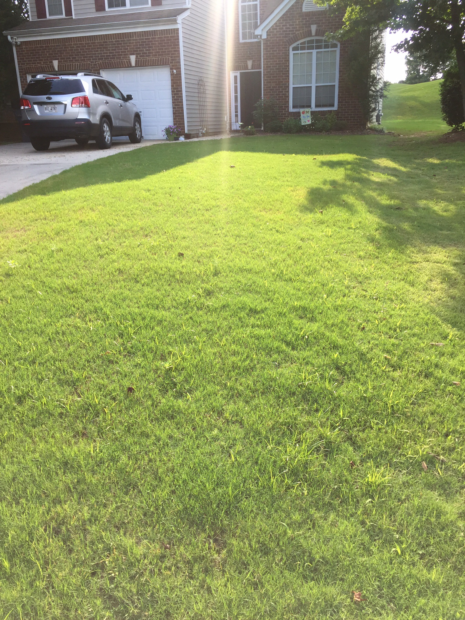 Lawn Care Service in Atlanta, GA, 30310