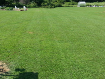 Lawn Care Service in Cottontown, TN, 37048