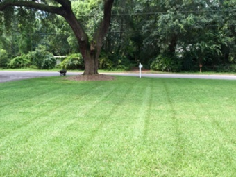Lawn Care Service in Seffner, FL, 33584