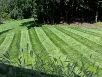 Lawn Care Service in Villa Ridge, MO, 63089