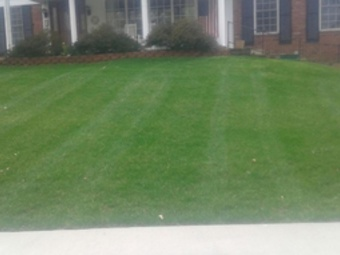Lawn Care Service in St. Louis , MO, 63116
