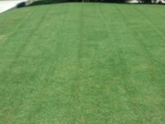 Lawn Care Service in Murfreesboro, TN, 37129