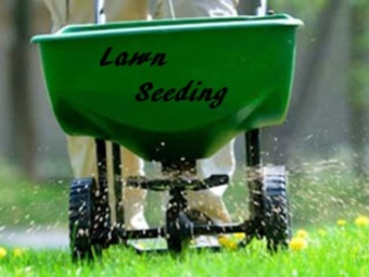 Lawn Care Service in Nashville, IL, 62263