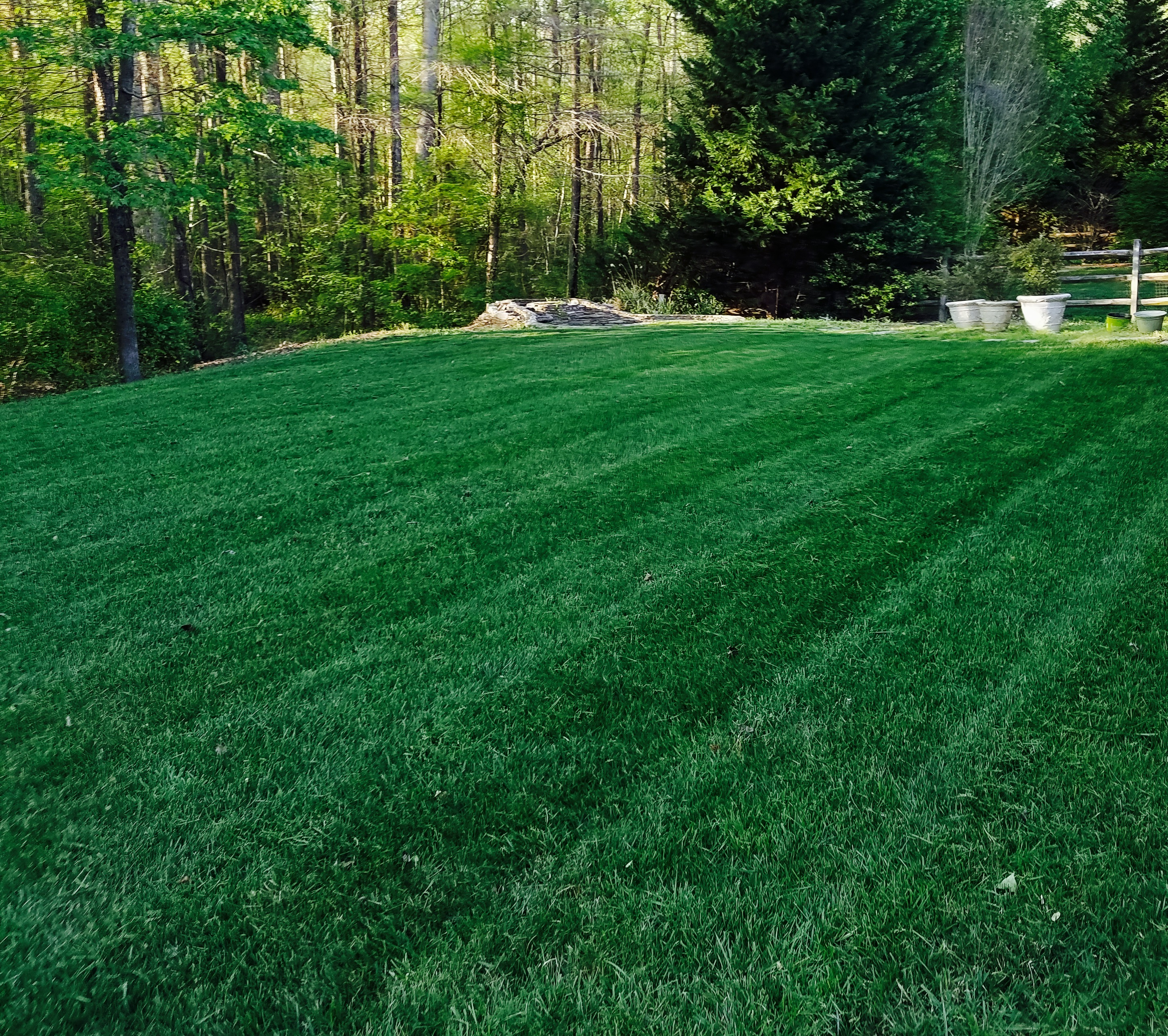 Lawn Care Service in Charlotte, NC, 28215