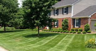 Lawn Care Service in St. Louis, MO, 63105
