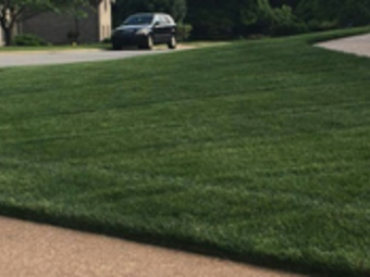 Lawn Care Service in Mt.Juliet , TN, 37122