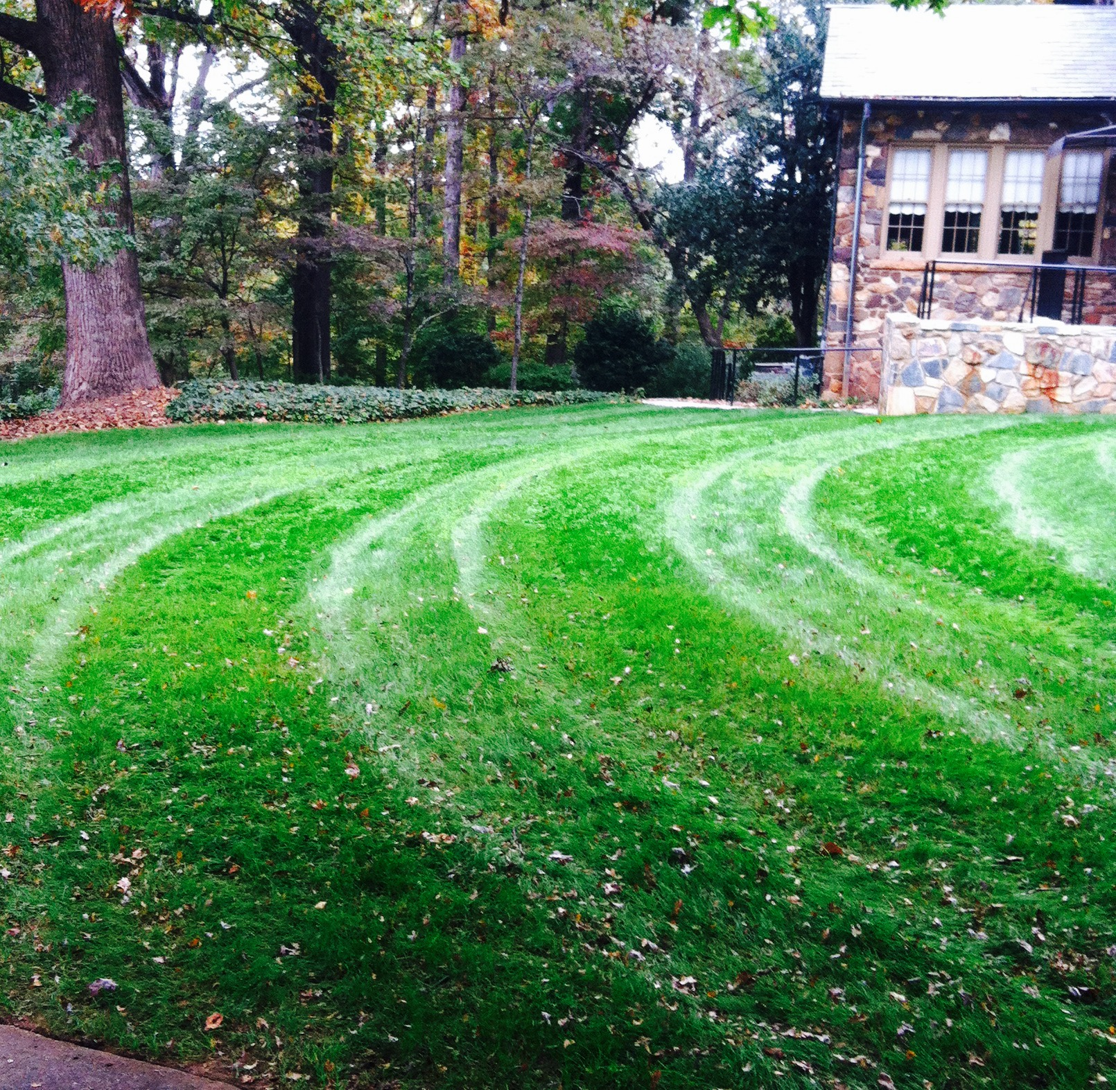 Lawn Care Service in Grayson , GA, 30017