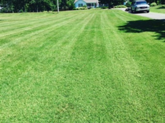 Lawn Care Service in Nashville, TN, 37205