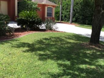Lawn Care Service in Riverview , FL, 33569